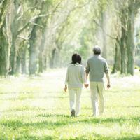 ポプラ並木を歩くシニア夫婦の後姿