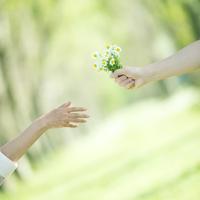 野花を渡す手元