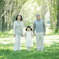 ポプラ並木で手をつなぐ祖父母と孫