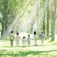 ポプラ並木で手をつなぐ3世代家族の後姿