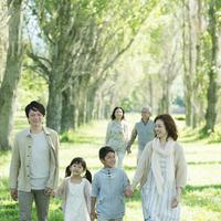ポプラ並木を歩く3世代家族