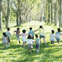 ポプラ並木を走る子供たちの後姿