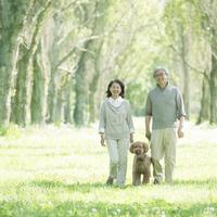 新緑の中で犬の散歩をするシニア夫婦