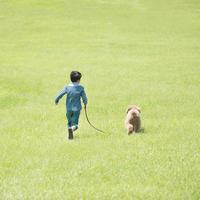 草原で犬の散歩をする男の子の後姿