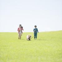 草原で犬の散歩をする姉弟 20027011286| 写真素材・ストックフォト・画像・イラスト素材|アマナイメージズ