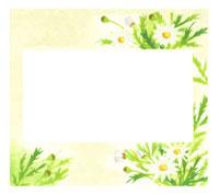 メッセージボードと花