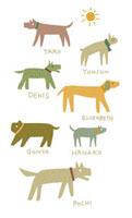 7匹の犬 20037002843| 写真素材・ストックフォト・画像・イラスト素材|アマナイメージズ
