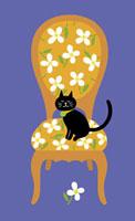 椅子に座った黒猫 20037002967| 写真素材・ストックフォト・画像・イラスト素材|アマナイメージズ