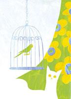 鳥かごの鳥 20037003395| 写真素材・ストックフォト・画像・イラスト素材|アマナイメージズ