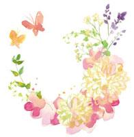 花と蝶 20037005199| 写真素材・ストックフォト・画像・イラスト素材|アマナイメージズ