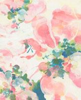 ピンクの花のイメージ