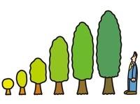 木の成長とビジネスマン