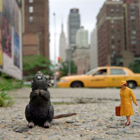 Rat in New York