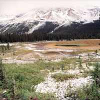 Landscape Canada