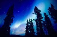 ern lights