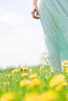 Summer 20038006141| 写真素材・ストックフォト・画像・イラスト素材|アマナイメージズ
