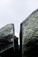 Crevice and moss