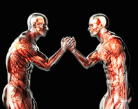 Male anatomical models arm wrestling on black background