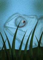 Chameleon camouflaged against blue background