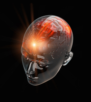 Illuminated activity from red human brain in transparent hea