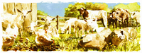 Watercolor painting of various farmyard animals in field together