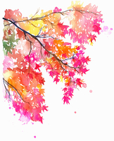 Branch of bright colorful maple leaves in autumn