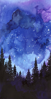 Starry night sky above forest