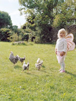 Girl looking at chickens