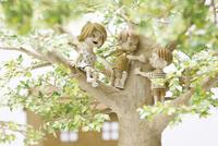 木登りしている三人の子供 20041000483| 写真素材・ストックフォト・画像・イラスト素材|アマナイメージズ