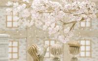 桜の木の下の子供