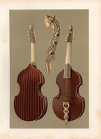 Viola da gamba or bass viol