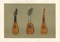 Pandurina and Milanese mandoline lutes 20042001177| 写真素材・ストックフォト・画像・イラスト素材|アマナイメージズ