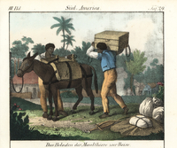 Brazilian slaves loading a horse for a journey.