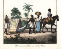 Brazilian slaves carrying woman in litter..