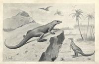 Hypsilophodon foxii and pterodactyls.