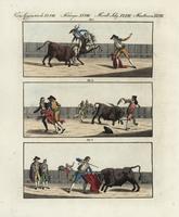 Matadors and picadors in a bullfight.