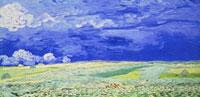Field under a Stormy Sky