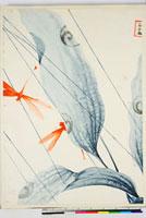 友禅図案(夏模様随意友禅図案集より) 20046000532| 写真素材・ストックフォト・画像・イラスト素材|アマナイメージズ