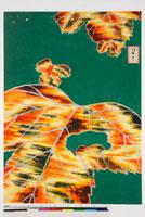 友禅図案 20046000932| 写真素材・ストックフォト・画像・イラスト素材|アマナイメージズ