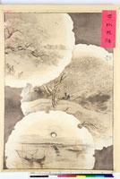 友禅図案 20046001132| 写真素材・ストックフォト・画像・イラスト素材|アマナイメージズ