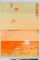 友禅図案 20046001154| 写真素材・ストックフォト・画像・イラスト素材|アマナイメージズ