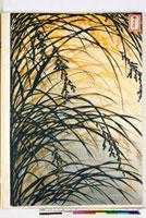 友禅図案(秋模様友禅図案集より) 20046002819| 写真素材・ストックフォト・画像・イラスト素材|アマナイメージズ