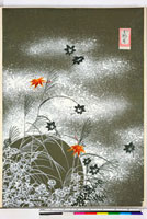 友禅図案(秋模様友禅図案集より) 20046002856| 写真素材・ストックフォト・画像・イラスト素材|アマナイメージズ