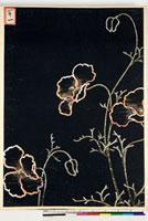 友禅図案(夏模様随意友禅図案集より) 20046003921| 写真素材・ストックフォト・画像・イラスト素材|アマナイメージズ