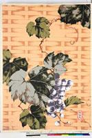 友禅図案(夏模様随意友禅図案集より) 20046003927| 写真素材・ストックフォト・画像・イラスト素材|アマナイメージズ