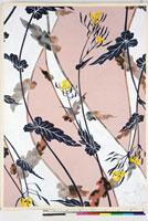 友禅図案(夏模様随意友禅図案集より) 20046003931| 写真素材・ストックフォト・画像・イラスト素材|アマナイメージズ