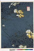 友禅図案(夏模様随意友禅図案集より) 20046003990| 写真素材・ストックフォト・画像・イラスト素材|アマナイメージズ