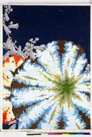 友禅図案(夏模様随意友禅図案集より) 20046004032| 写真素材・ストックフォト・画像・イラスト素材|アマナイメージズ