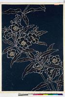 友禅図案(夏模様随意友禅図案集より) 20046004058| 写真素材・ストックフォト・画像・イラスト素材|アマナイメージズ