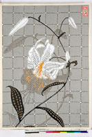 友禅図案(夏模様随意友禅図案集より) 20046004182| 写真素材・ストックフォト・画像・イラスト素材|アマナイメージズ